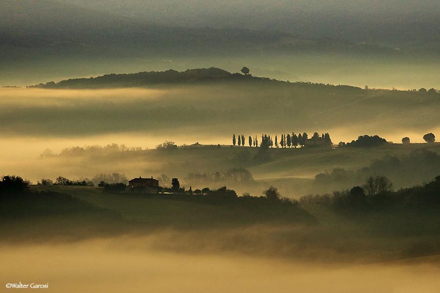 Nebbia 2011