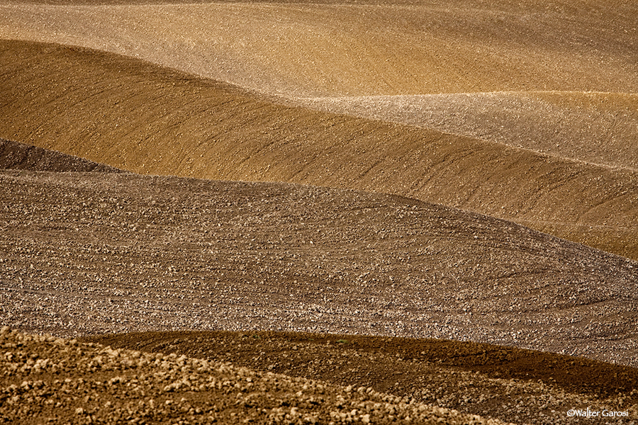 Toscana 2010